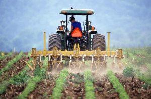Παράταση για το αγροτικό τιμολόγιο ζητούν οι γεωπόνοι