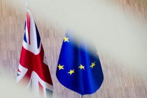 Χάμοντ: Η χώρα πρέπει να επιλύσει το ζήτημα του Brexit όμως η αλλαγή της Μέι δεν θα βοηθούσε