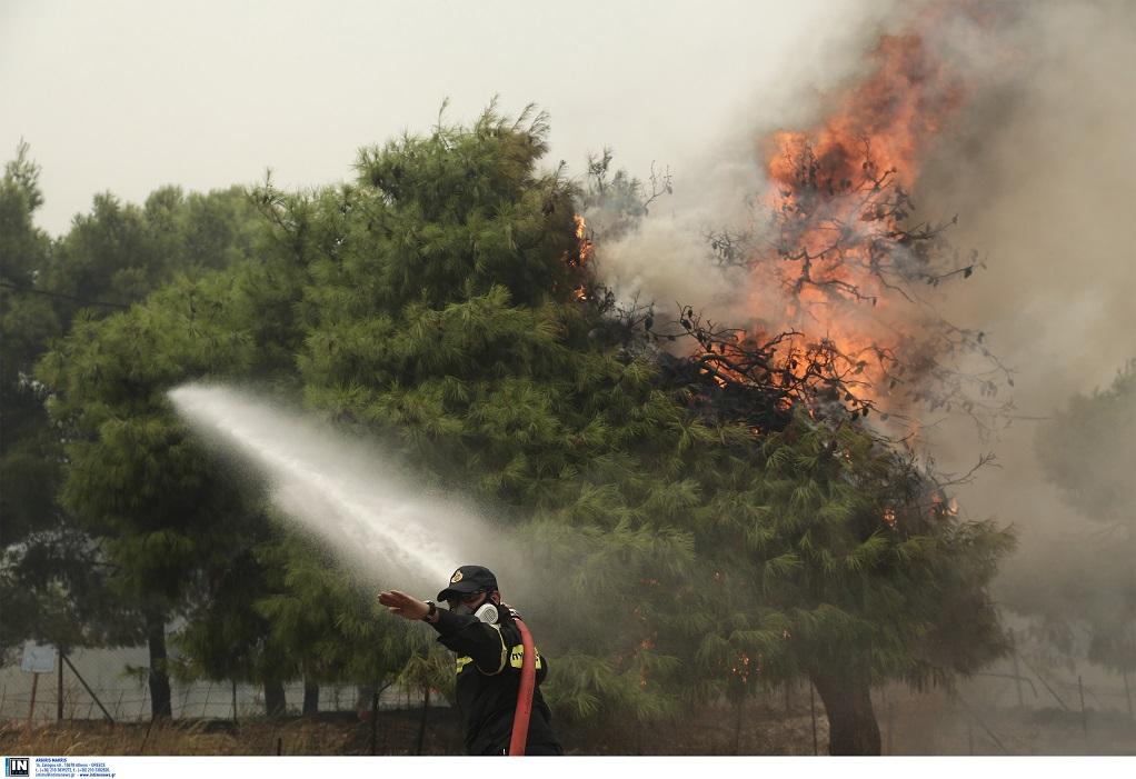 Φωτιά στη Σαλαμίνα – Εκκένωση οικισμού