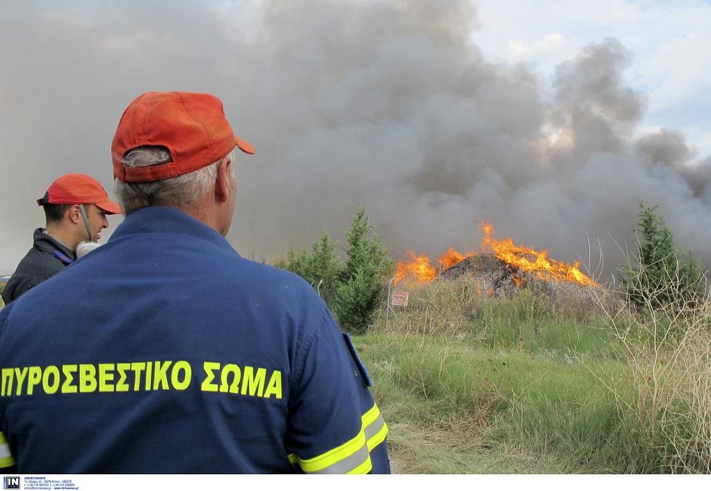 Ενισχύονται οι πυροσβεστικές δυνάμεις στην πυρκαγιά του Λαυρίου