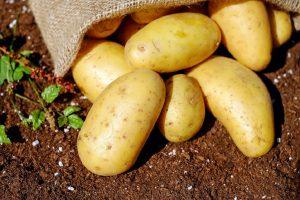 Μήπως τόσα χρόνια πλένουμε λάθος τις πατάτες;
