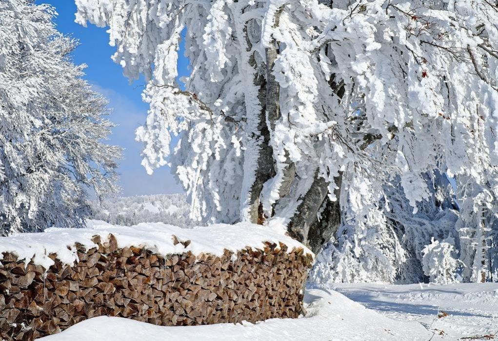 Κακοκαιρία «Μήδεια» – Από Σάββατο οι πυκνές χιονοπτώσεις και οι πολικές θερμοκρασίες