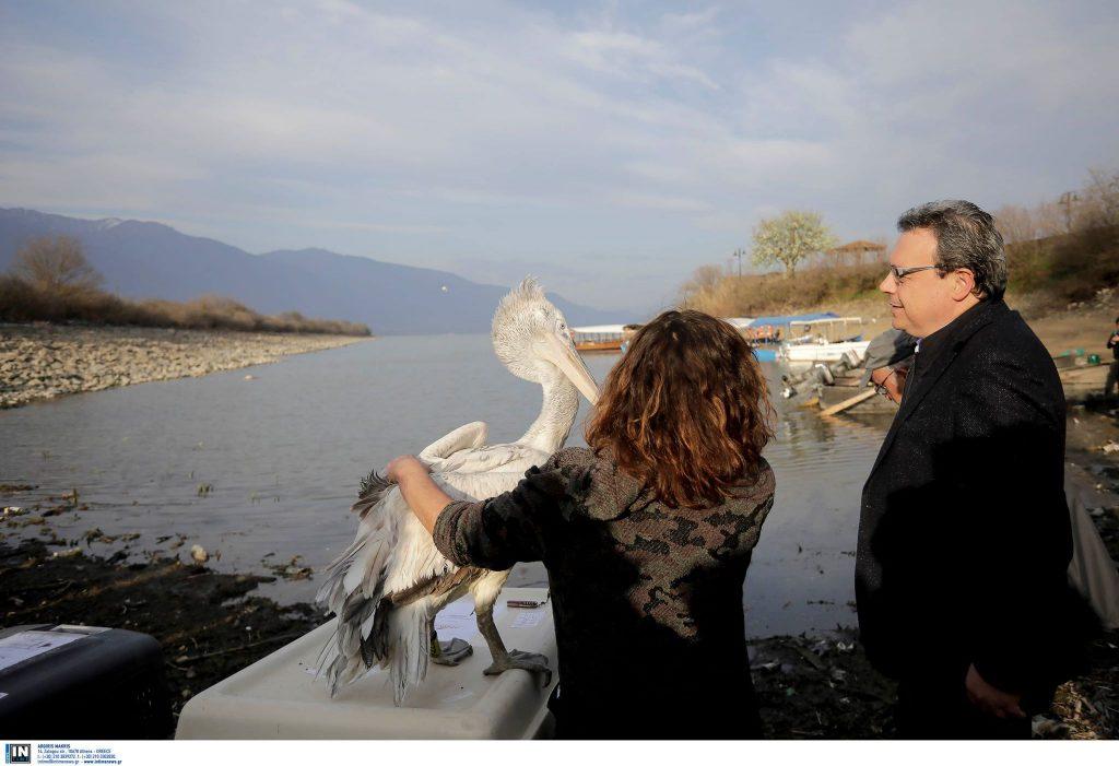 Επίσκεψη του Αναπλ. Υπουργού Περιβάλλοντος και Ενέργειας Σωκράτη Φάμελλου στη Λίμνη Κερκίνη