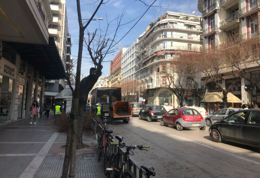"""""""Λίφτινγκ"""" σε 520 στρέμματα πρασίνου και χιλιάδες δέντρα στη Θεσσαλονίκη"""