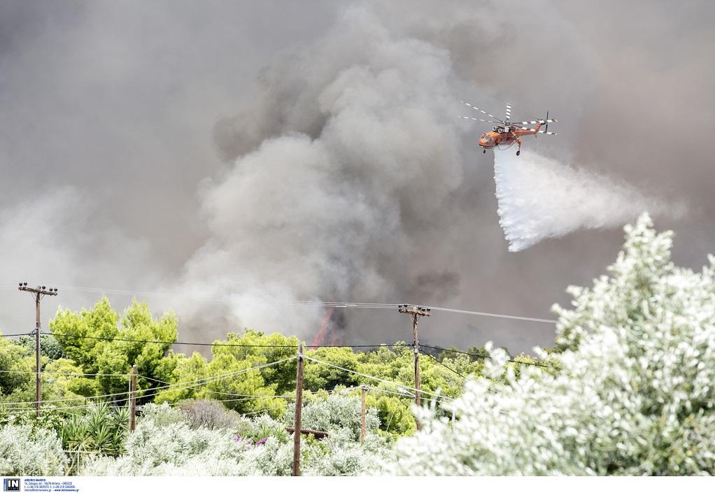 Περισσότερες από πενήντα δασικές πυρκαγιές το τελευταίο 24ωρο στην Ελλάδα