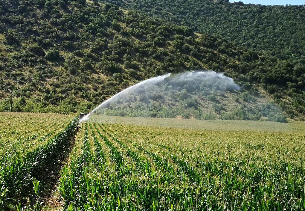 Με τη χρήση Drone άρδευση σε καλλιέργειες στο θεσσαλικό κάμπο