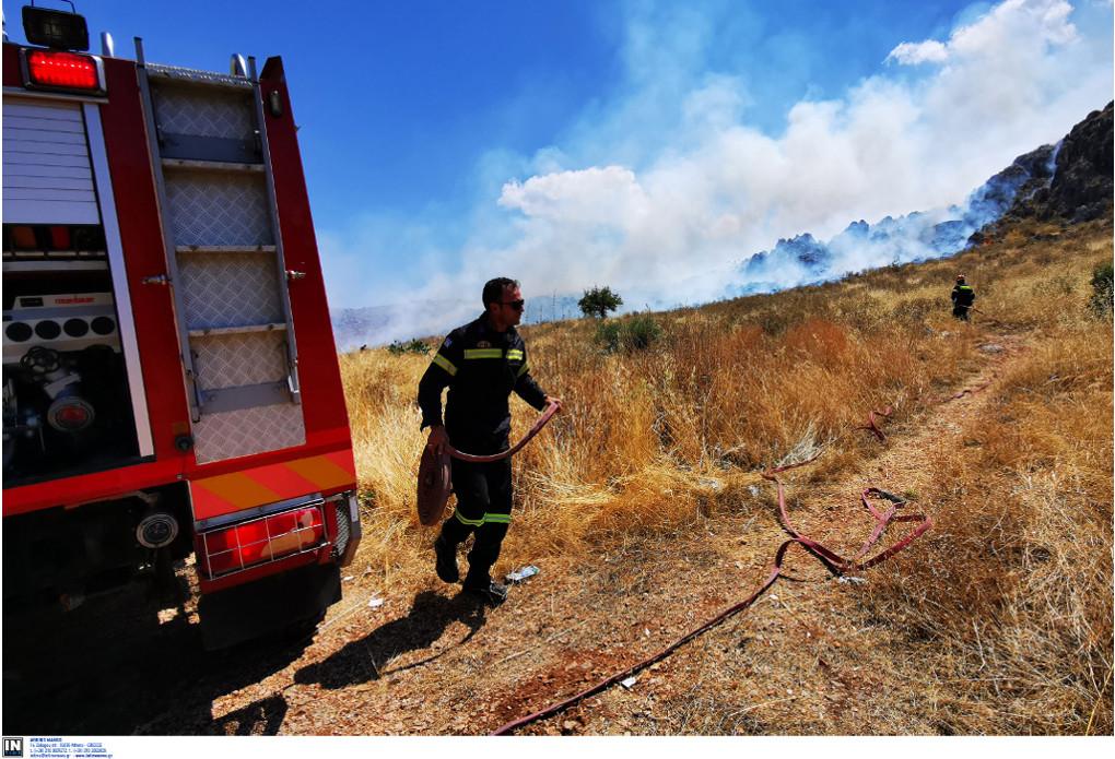 Κιθαιρώνας: Οι ισχυροί άνεμοι συντηρούν τις φωτιές