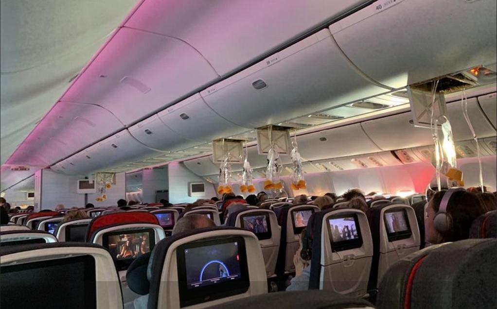 Αναγκαστική προσγείωση για αεροσκάφος της Air Canada- 37 τραυματίες (VIDEO)