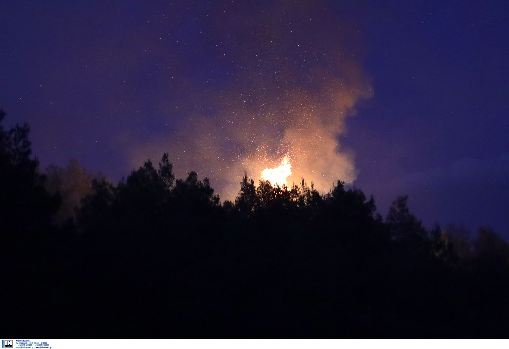 Υψηλός κίνδυνος πυρκαγιάς σήμερα- Δείτε σε ποιες περιοχές