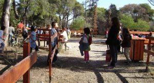 Χαλκιδική: Κανονικά λειτουργούν οι περισσότερες παιδικές κατασκηνώσεις