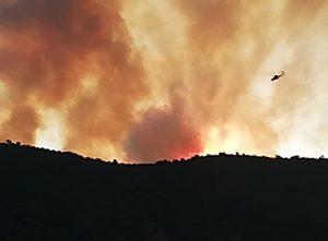 Σε εξέλιξη η πυρκαγιά στην Θήβα (ΦΩΤΟ)