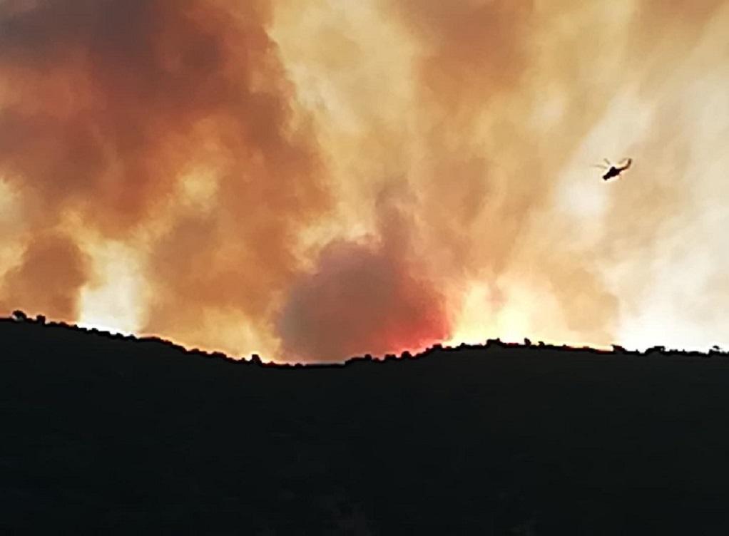 Πολύ υψηλός κίνδυνος πυρκαγιάς αύριο – Οι περιοχές