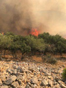 Σπέτσες: Φωτιά εκδηλώθηκε στο Καστέλι
