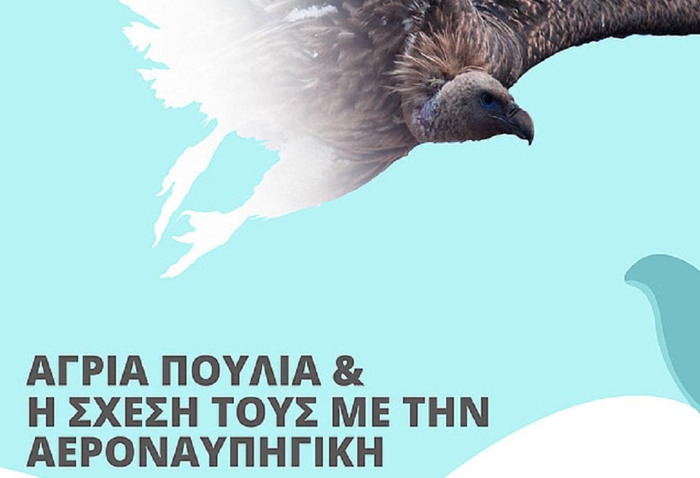 Έκθεση στην Κρήτη- Άγρια πουλιά και η σχέση τους με την αεροναυπηγική