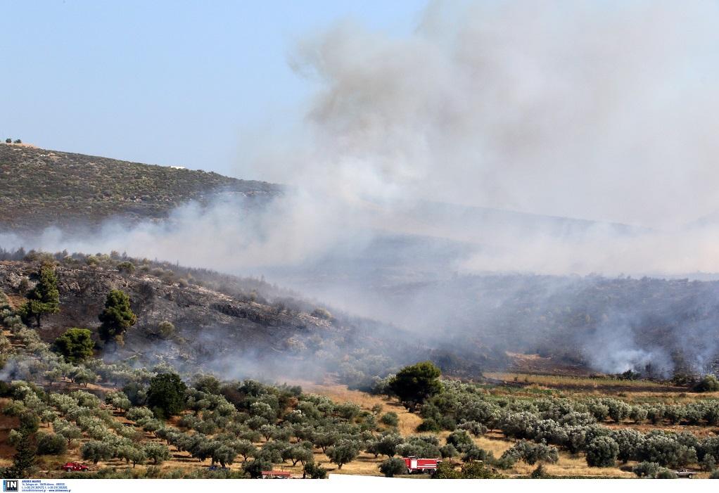 Σε εξέλιξη πυρκαγιά στην Αχαϊα- Καλύτερη η εικόνα στην Ηλεία