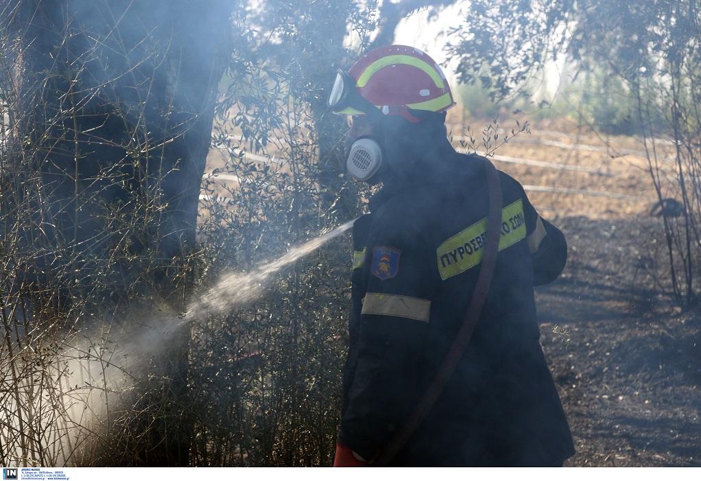 Πυρκαγιά στην εθνική οδό Θεσσαλονίκης – Ν.Μουδανιών