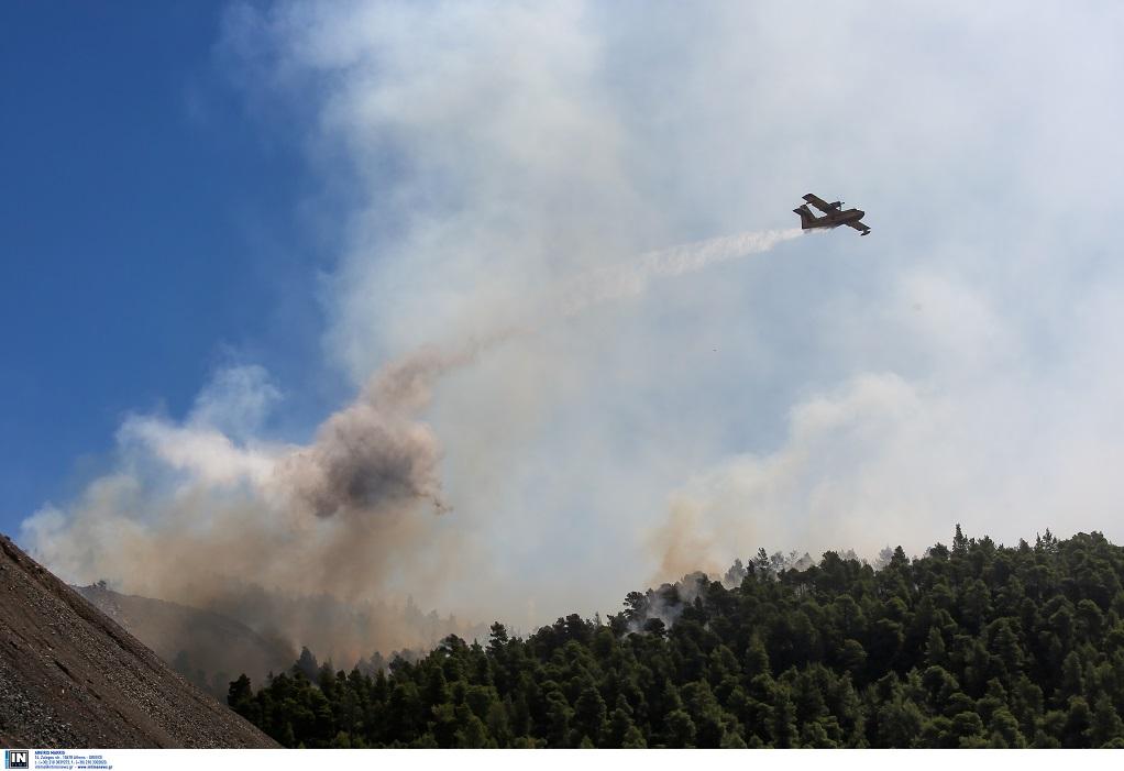 Εύβοια: Μάχη στα δύο μέτωπα της φωτιάς