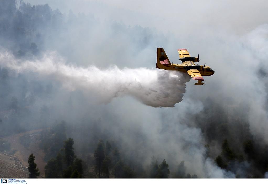 Εύβοια: Περιορισμένη σε χαράδρα η φωτιά