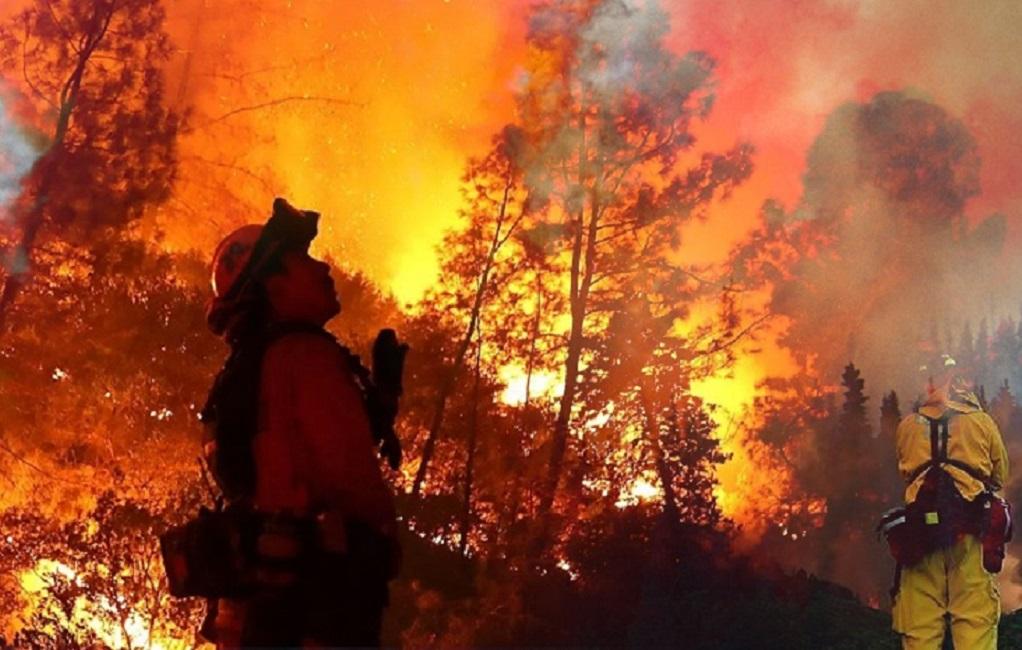 Ινδονησία: Φέτος κάηκαν 16 εκατ. στρέμματα γης