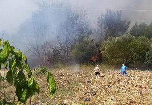 Περιορίστηκε η φωτιά στην Κέρκυρα – Σε εξέλιξη αυτή στη Μεγαλόπολη