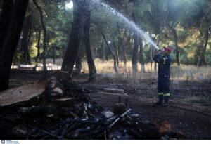 Φωτιά στη Θήβα-Δεν απειλεί κατοικημένες περιοχές