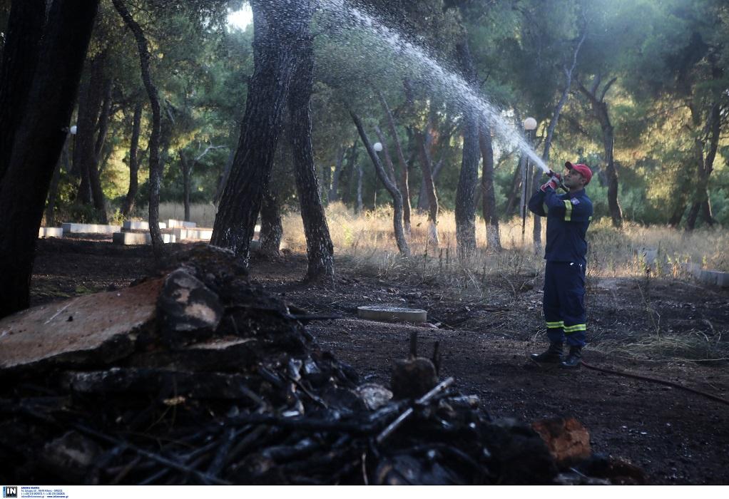 Πυροσβεστική- 45 δασικές πυρκαγιές το τελευταίο 24ωρο σε όλη τη χώρα