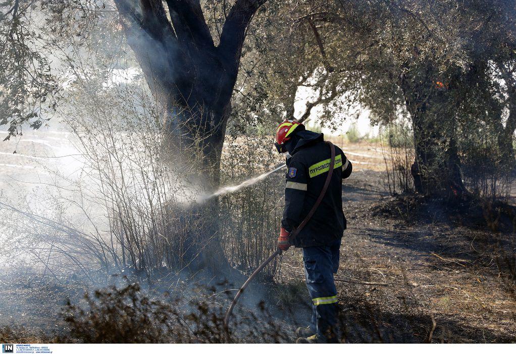 Πυρκαγιά στη Θάσο