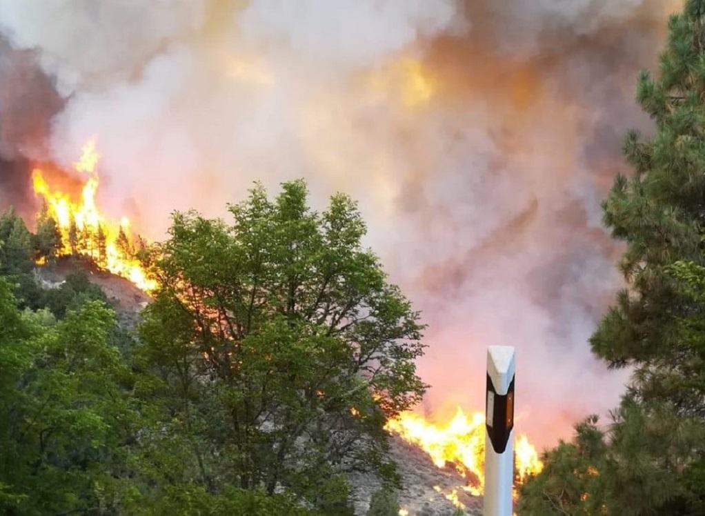 Νέα πυρκαγιά στη Γκραν Κανάρια – Εκκενώνεται ορεινή περιοχή και πολυτελές ξενοδοχείο (VIDEO)