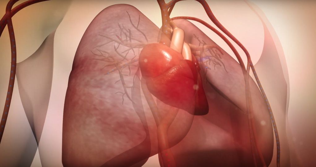 Πανδημία κορωνοϊού και καρδιαγγειακό σύστημα