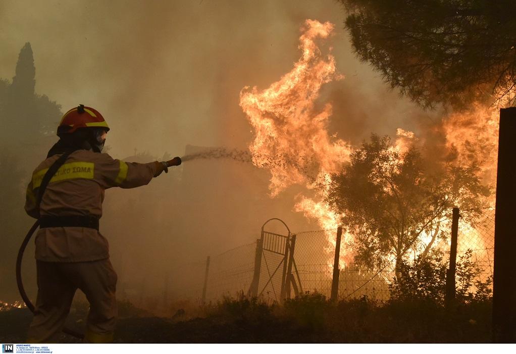 Φωτιά στο Διόνυσο Aττικής