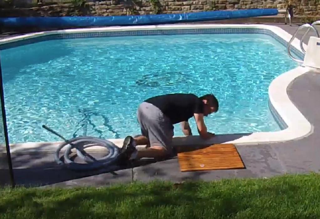 Ξεκαρδιστικό: Πανικοβλήθηκε όταν είδε λαγό, έπεσε στην πισίνα
