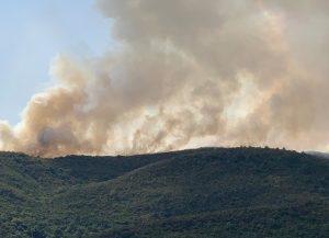 Πολύ υψηλός ο κίνδυνος πυρκαγιάς το Σάββατο -Σε επιφυλακή οκτώ περιφέρειες