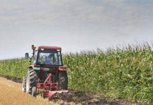 Πώς θα υποβάλλουν οι αγρότες την Ενιαία Αίτηση Ενίσχυσης