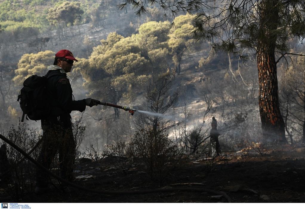 Σύλληψη 55χρονου για την φωτιά στους Καλαφατιώνες Κέρκυρας
