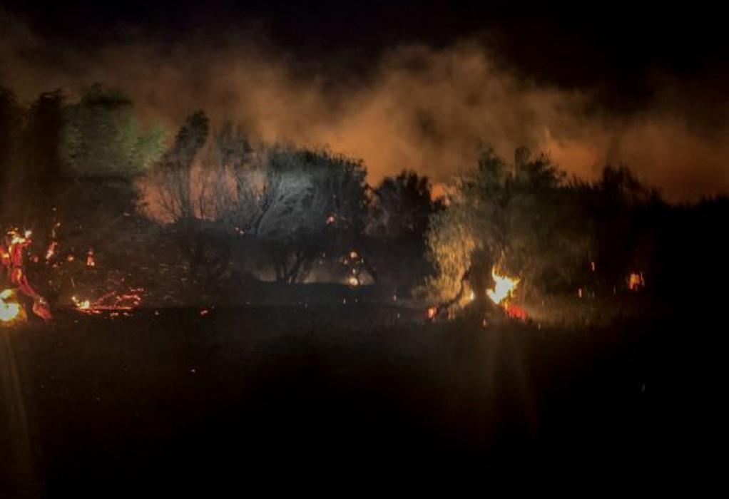 Ζάκυνθος: Δεν απειλούνται πλέον χωριά από την φωτιά – Προς ύφεση η πυρκαγιά στο Λουτράκι