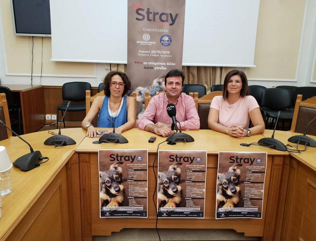 StrayAction: Δράσεις για τα Αδέσποτα με την στήριξη της Περιφέρειας Κρήτης