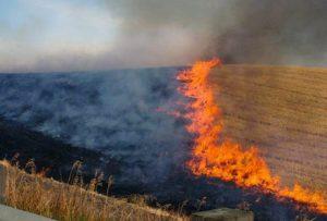 Δήμος Δέλτα: Απαγόρευση της καύσης των γεωργικών υπολειμμάτων και ποινές για τους παραβάτες