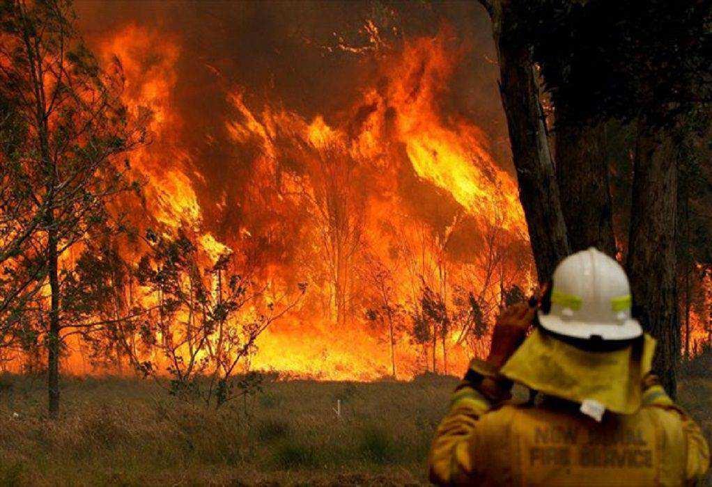 Αυστραλία: Έρευνα για τις φωτιές του περασμένου καλοκαιριού