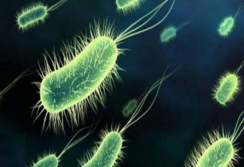 Παγκόσμια απειλή η μικροβιακή αντοχή