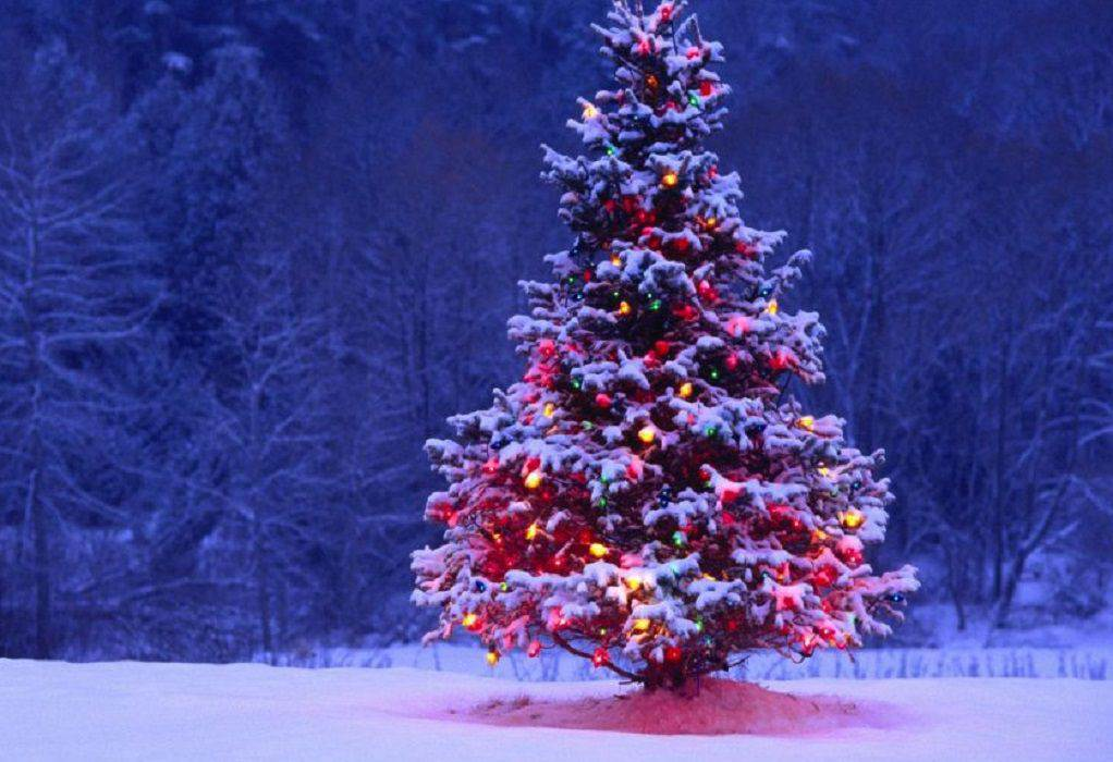 Σιβηρία: Ένα χριστουγεννιάτικο δέντρο… σκέτο σκάνδαλο