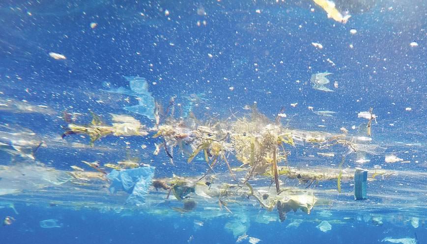 Το οξυγόνο μειώνεται σε όλο και περισσότερες θάλασσες
