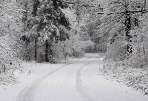 Παρνασσός: Απαγορευτικό για το χιονοδρομικό