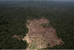 Αμαζόνιος: Ο υψηλότερος αριθμός πυρκαγιών τα τελευταία 13 χρόνια
