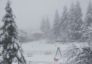 Έπεσαν τα πρώτα χιόνια σε Βίτσι και Σέλι (VIDEO)