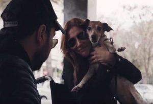 Σκύλοι βοηθοί: Αγάπη χωρίς αντάλλαγμα (VIDEO)