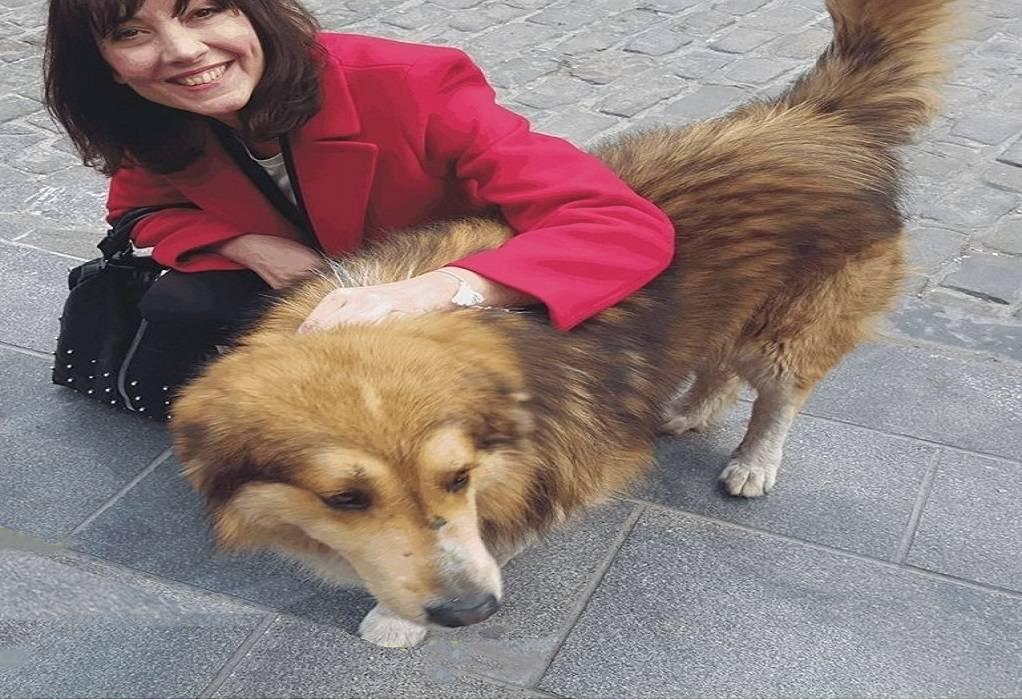 Θεσ/νίκη: Μήνυση κατ' αγνώστου για κακοποίηση ζώου