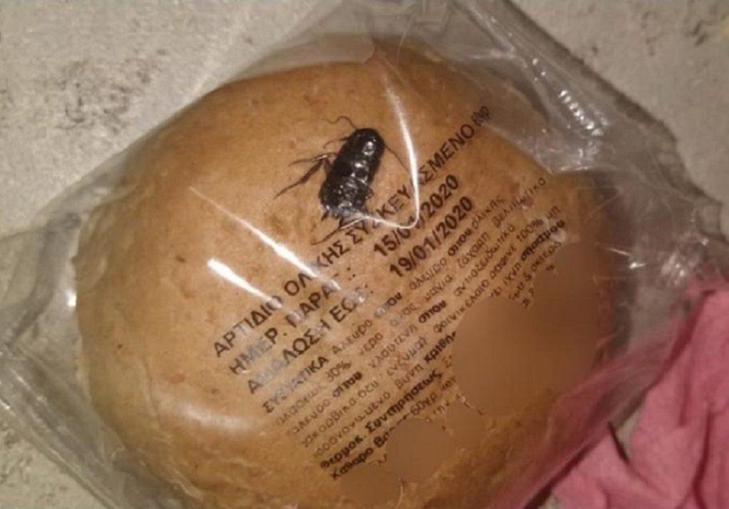 Άνω Λιόσια: Οργή για κατσαρίδα σε ψωμάκι σχολικού γεύματος