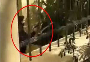 ΑΣΟΕΕ: Αστυνομικός τράβηξε όπλο μέσα στο πανεπιστήμιο (VIDEO)