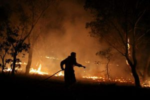 Βραζιλία: Ρεκόρ πυρκαγιών καταστρέφει τον Παντανάλ