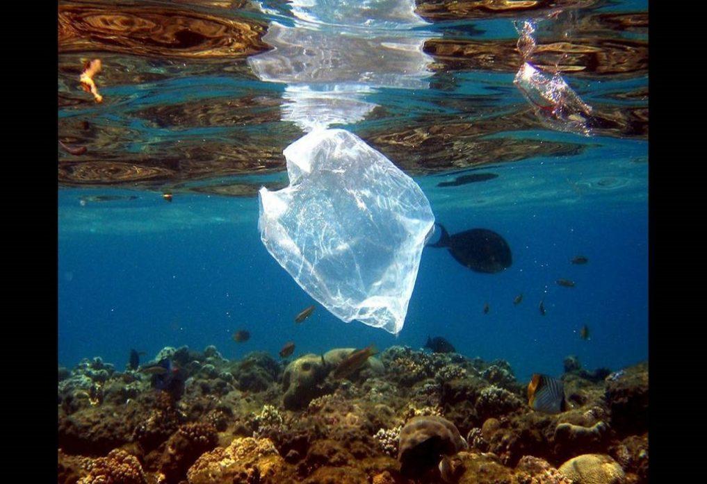 Θεσ/νίκη: Μαθητές επινόησαν εφαρμογή που εντοπίζει τη θαλάσσια μόλυνση